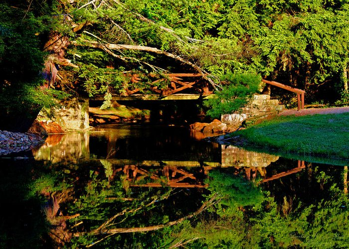 Log Bridge Greeting Card featuring the photograph Bridge Reflected by Darlene Bell