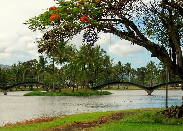 Landscape Greeting Card featuring the photograph Bridges At Wailoa by Dina Holland