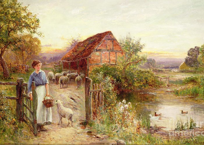 Bringing Home The Sheep By Ernest Walbourn (1872-1927) Greeting Card featuring the painting Bringing Home The Sheep by Ernest Walbourn
