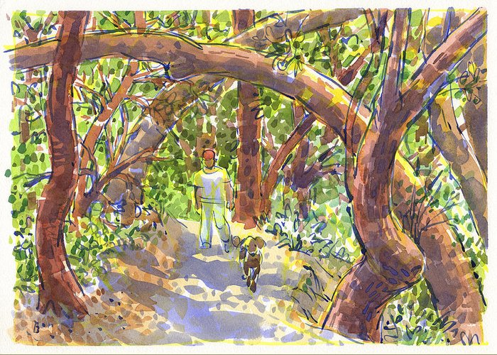 California Greeting Card featuring the painting Briones Forest Near Springhill Road by Judith Kunzle