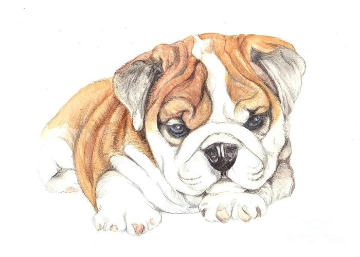 Brittish Greeting Card featuring the painting British Bulldog Puppy by Morgan Fitzsimons