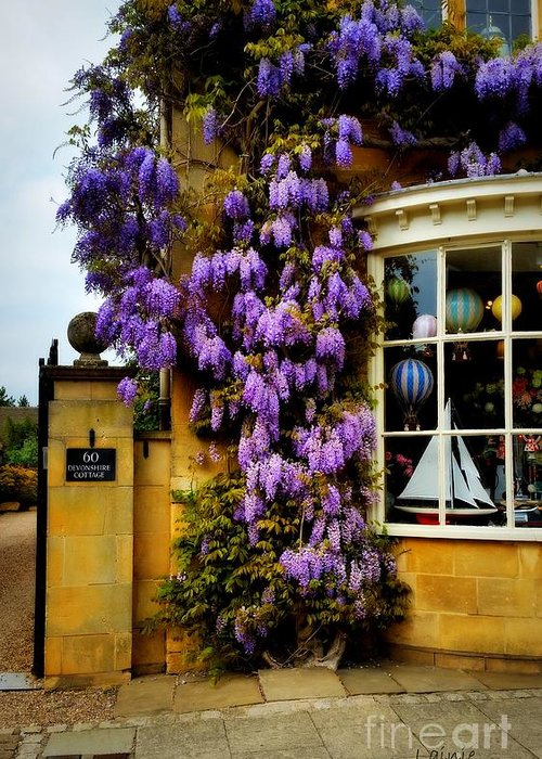 Wisteria Greeting Card featuring the photograph Broadway Spring 1 by Lainie Wrightson