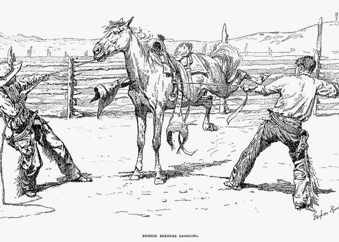 1888 Greeting Card featuring the photograph Bronco Busters Saddling by Granger