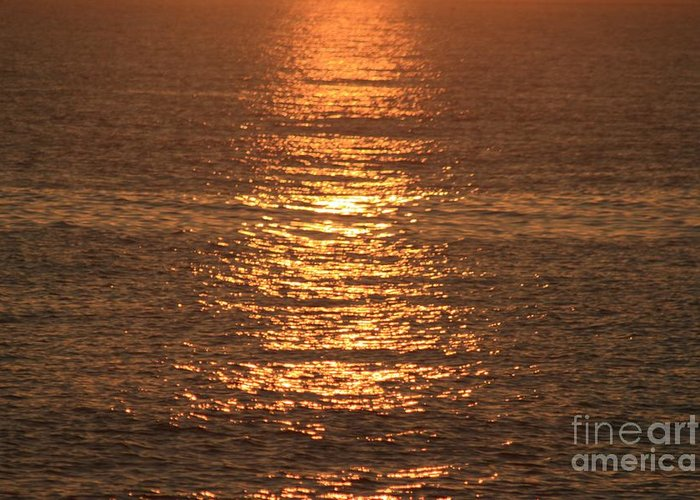 Ocean Greeting Card featuring the photograph Bronze Reflections by Nadine Rippelmeyer