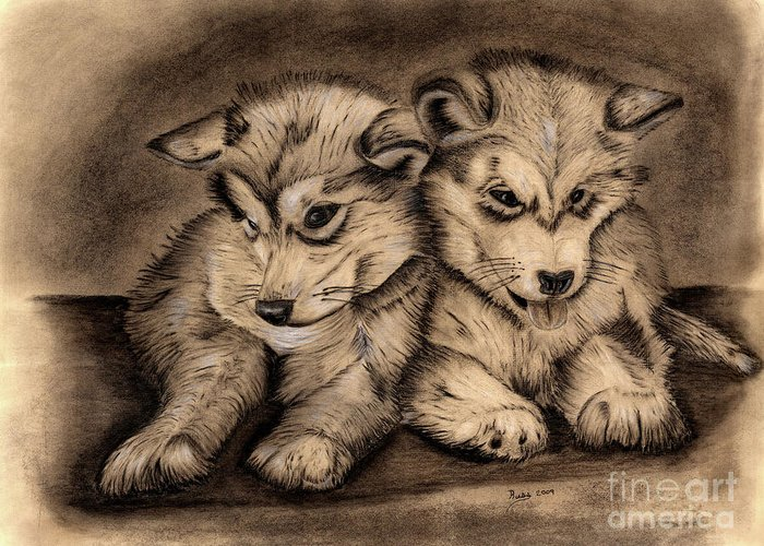 Puppies Greeting Card featuring the drawing Brotherly Love by Russ Smith