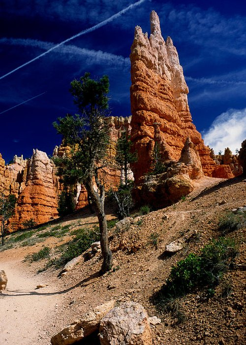 Bryce Canyon Greeting Card featuring the photograph Bryce Canyon 10 by Art Ferrier