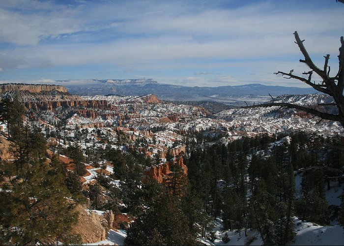 Canyon Greeting Card featuring the photograph Bryce Canyon 2 by Rich Tanguay