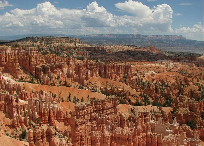 Bryce Greeting Card featuring the photograph Bryce Canyon Hoodoos by Helaine Cummins