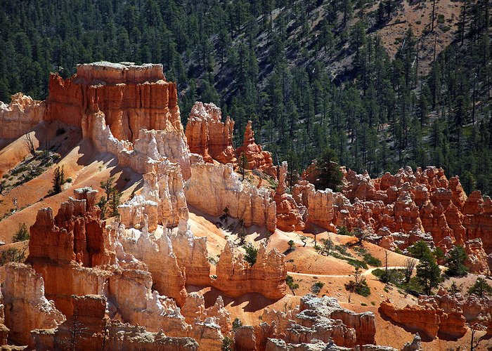 America Greeting Card featuring the photograph Bryce Canyon by Jane Rix