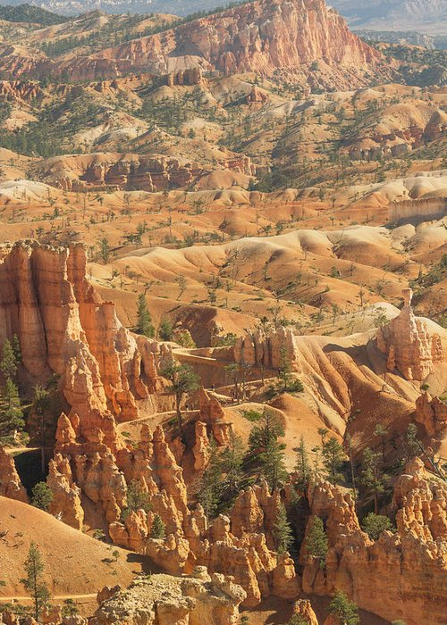 Bryce Greeting Card featuring the photograph Bryce Canyon by Peter J Sucy