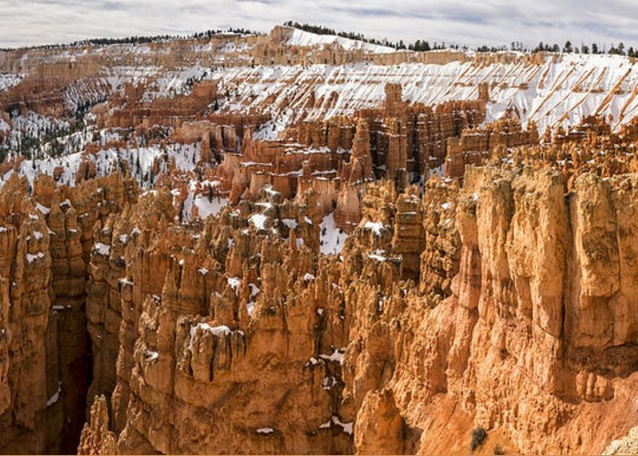 Bryce Greeting Card featuring the photograph Bryce Canyon Winter Panorama - Bryce Canyon National Park - Utah by Brian Harig