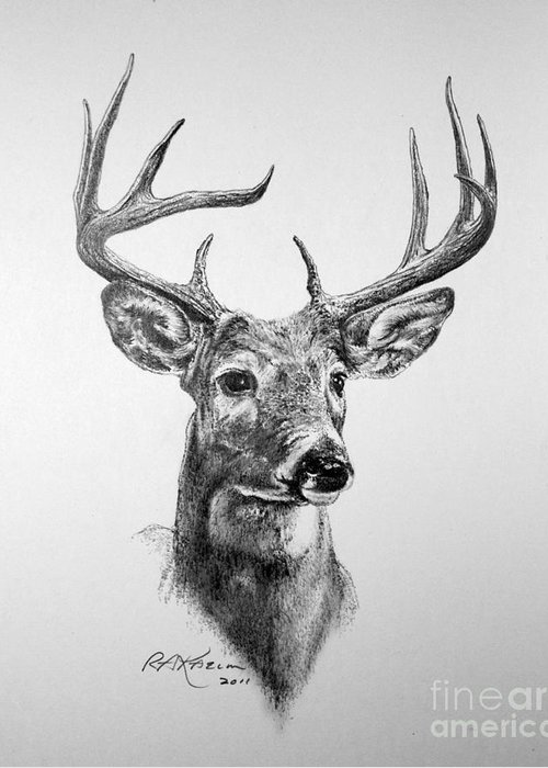 White Tailed Deer Stationery