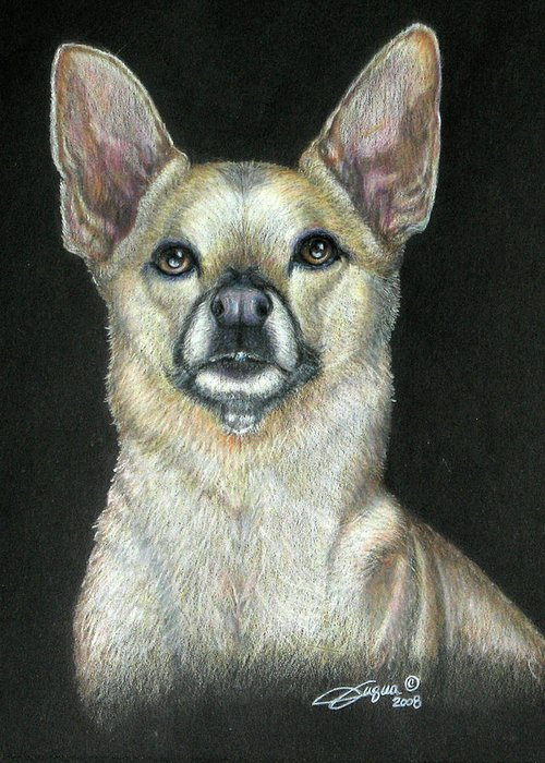 Fuqua - Artwork Greeting Card featuring the drawing Buffy by Beverly Fuqua