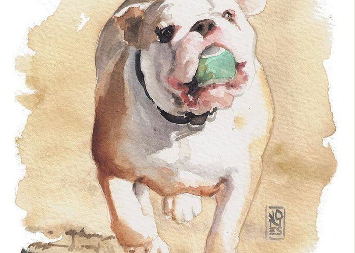 English Bull Dog Greeting Cards