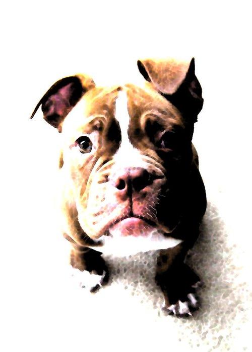 Bulldog Greeting Card featuring the digital art Bulldog Puppy by Michael Tompsett