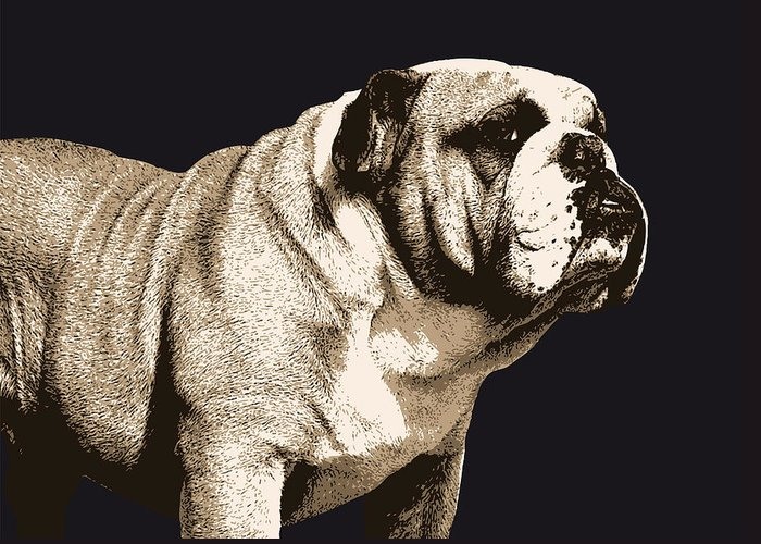 Bulldog Greeting Card featuring the digital art Bulldog Spirit by Michael Tompsett