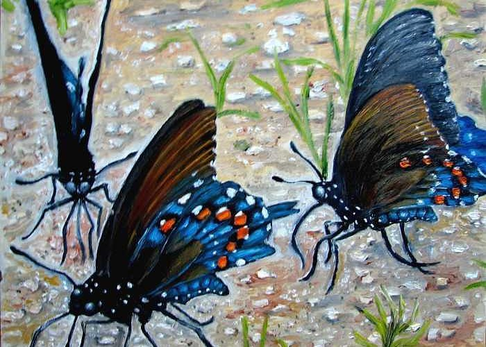 Butterfly Greeting Card featuring the painting Butterflies Original Oil Painting by Natalja Picugina