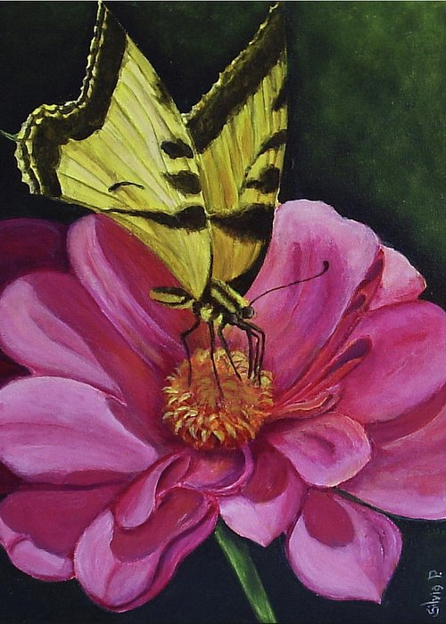 Flower Greeting Card featuring the painting Butterfly On A Pink Daisy by Silvia Philippsohn