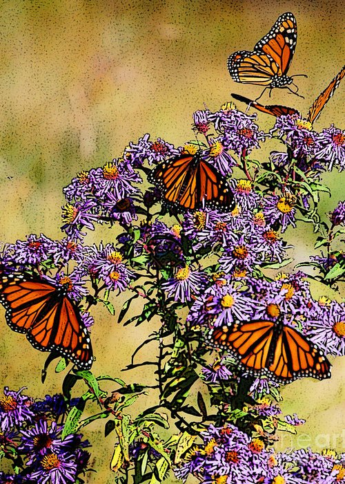 Diane Berry Greeting Card featuring the drawing Butterfly Party by Diane E Berry
