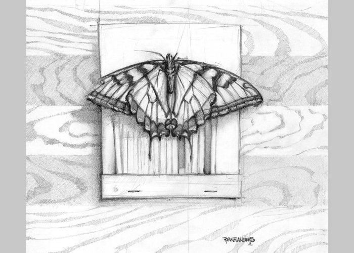 Butterfly Greeting Card featuring the drawing Butterfly With Matchbook by Ryan Flanders