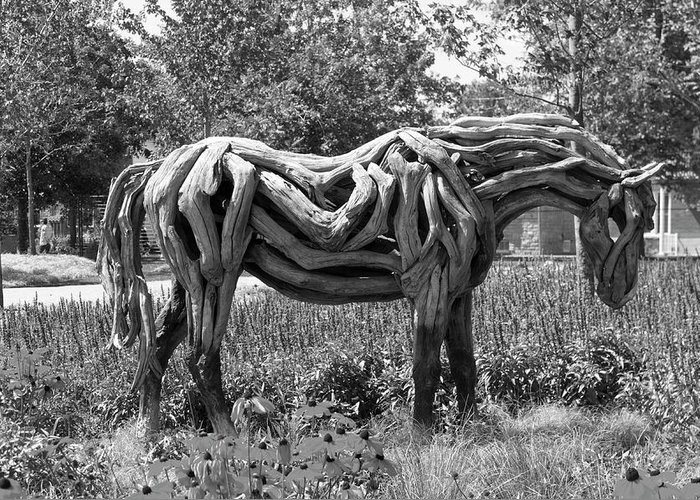 150 Greeting Card featuring the photograph Bw Of Odyssey The Horse Sculpture Made Of Driftwood By Heather Jansch. by Bob Corson