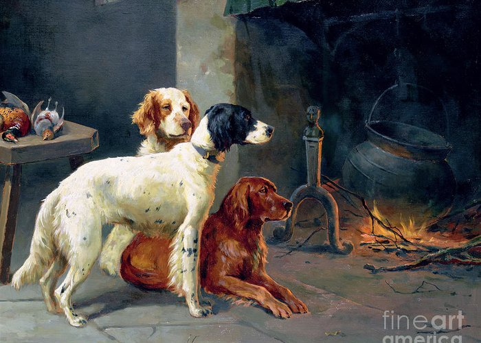 Dogs; Pheasants; Gundogs; Hearth; Cooking Pot; Irons; Irish Red Setter; English Setter; Working Dog Greeting Card featuring the painting By The Fire by Alfred Duke