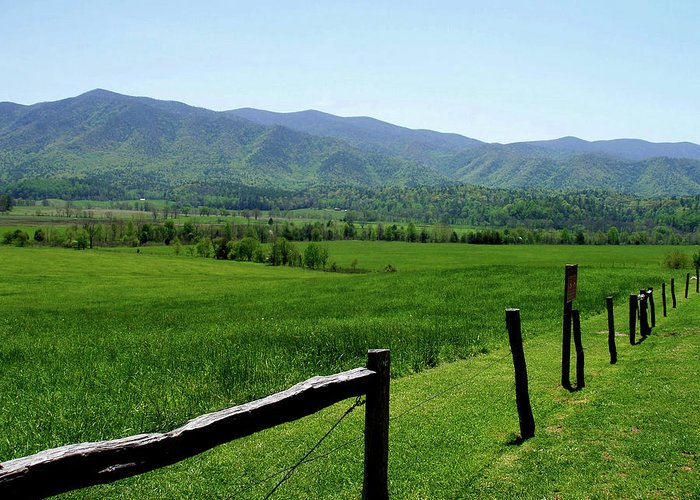Cades Cove Greeting Card featuring the photograph Cades Cove View by Nancy Mueller