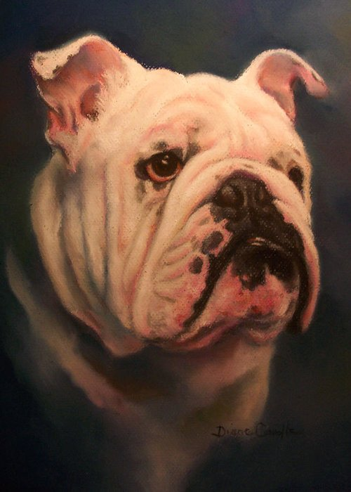 English Bull Dog Greeting Card featuring the painting Caesar by Diane Caudle
