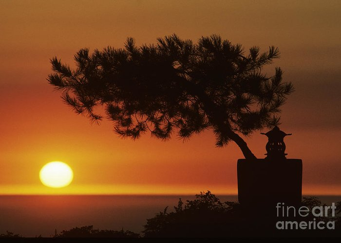 America Greeting Card featuring the photograph California, Big Sur Coast by Larry Dale Gordon - Printscapes