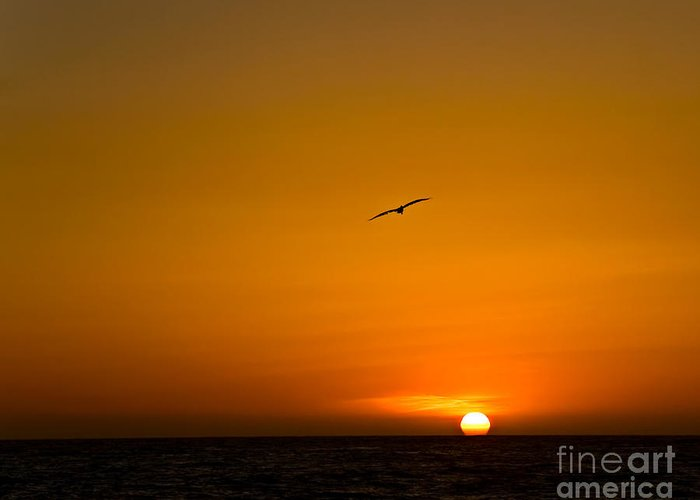 Beach Greeting Card featuring the photograph California Sunset by Carl Jackson