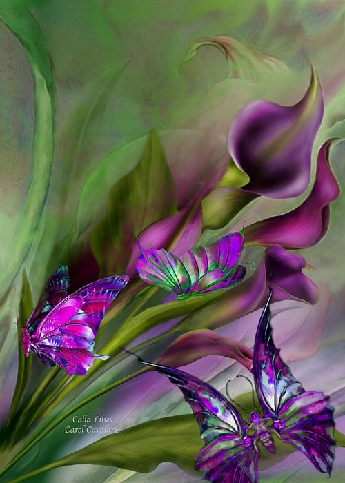 Calla Lilies Greeting Card featuring the mixed media Calla Lilies by Carol Cavalaris