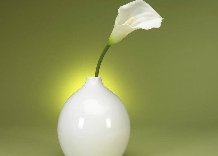 Calla Greeting Card featuring the photograph Calla Lily And Vase by Tony Ramos