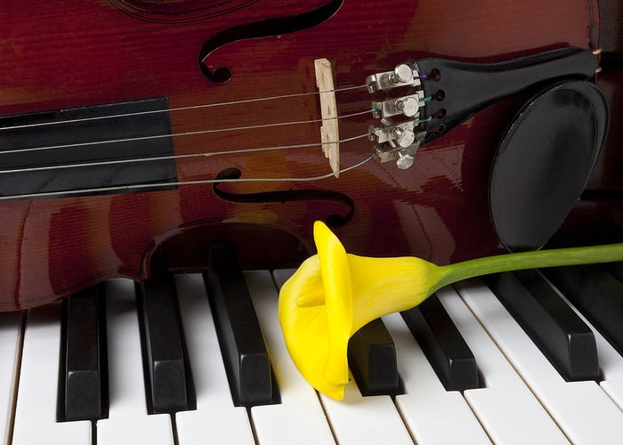 Calla Lily Greeting Card featuring the photograph Calla Lily And Violin On Piano by Garry Gay