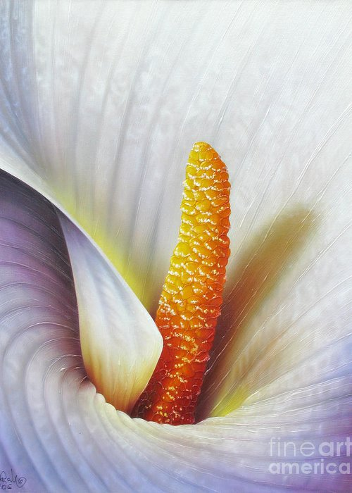 Flowers Greeting Card featuring the painting Calla Lily by Jurek Zamoyski