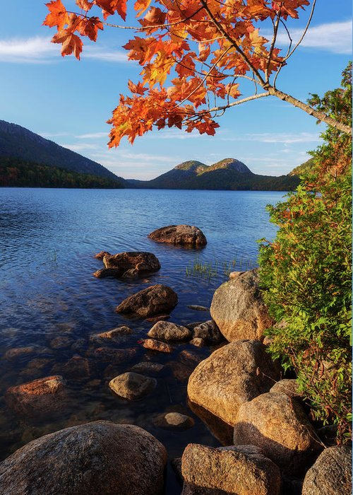 Acadia National Park Photographs Greeting Cards