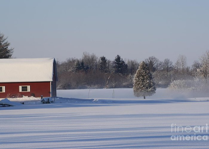 Calm Greeting Card featuring the photograph Calm by Cathy Beharriell