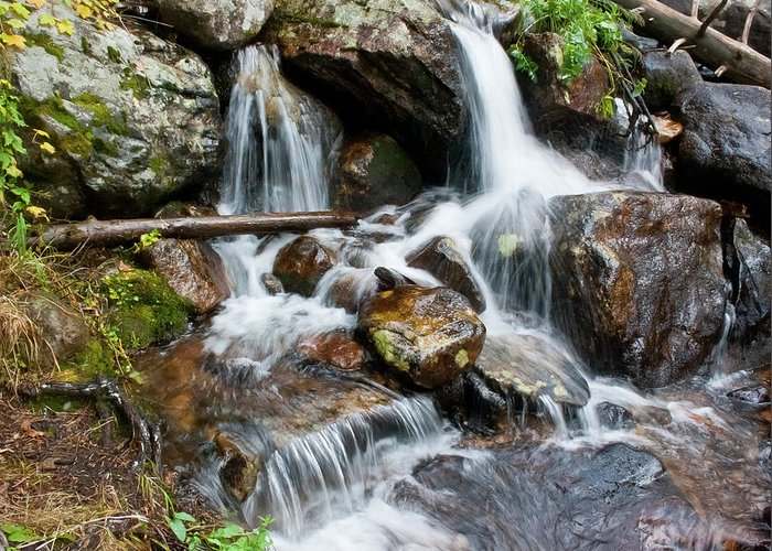 Wild Basin Greeting Card featuring the photograph Calypso Cascades White Water by Brent Parks