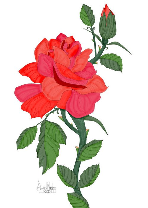 Red Rose Greeting Card featuring the painting Calypso Rose by Anne Norskog