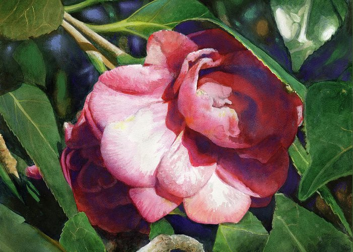 Flowers Greeting Card featuring the painting Camellianne by Andrew King