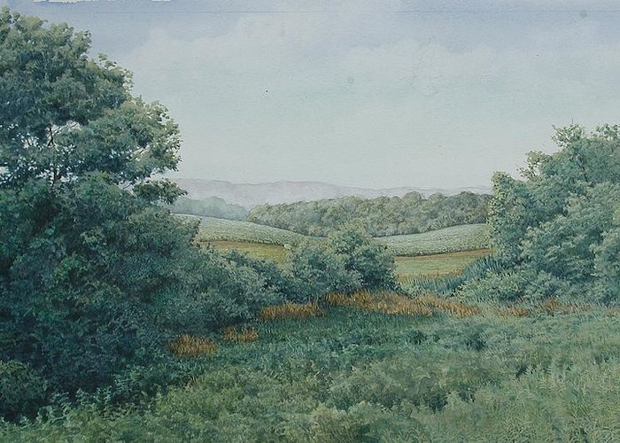 Landscape Greeting Card featuring the painting Camillus Field by Stephen Bluto