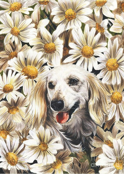 Dachshund Greeting Card featuring the drawing Camoflaged by Barbara Keith