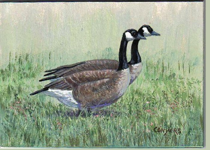 Goose Greeting Card featuring the painting Canada Geese Pair by Peggy Conyers