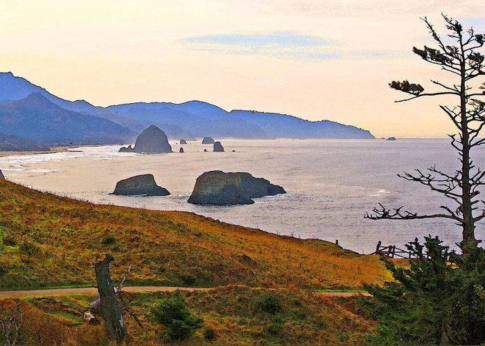 Cannon Beach Greeting Card featuring the photograph Cannon Beach From Ecola State Park by Margaret Hood