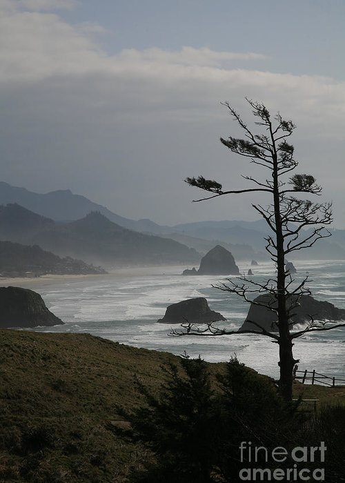 Cannon Beach Greeting Card featuring the photograph Cannon Beach by Timothy Johnson