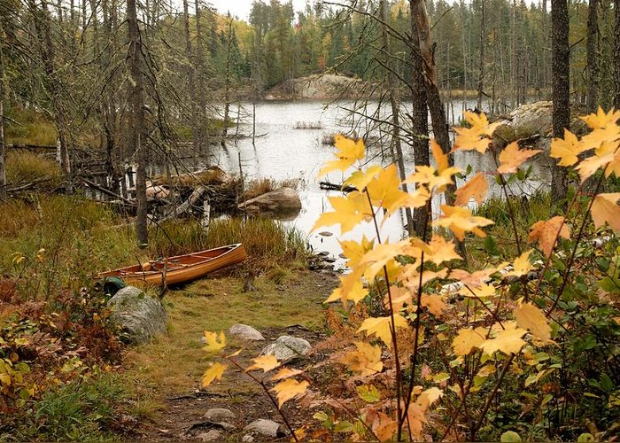 Boundary Waters Canoe Area Wilderness Greeting Card featuring the photograph Canoe At Little Bass Lake by Larry Ricker