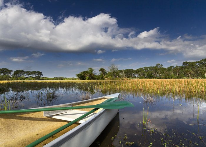 Boats Greeting Card featuring the photograph Canoeing In The Everglades by Debra and Dave Vanderlaan