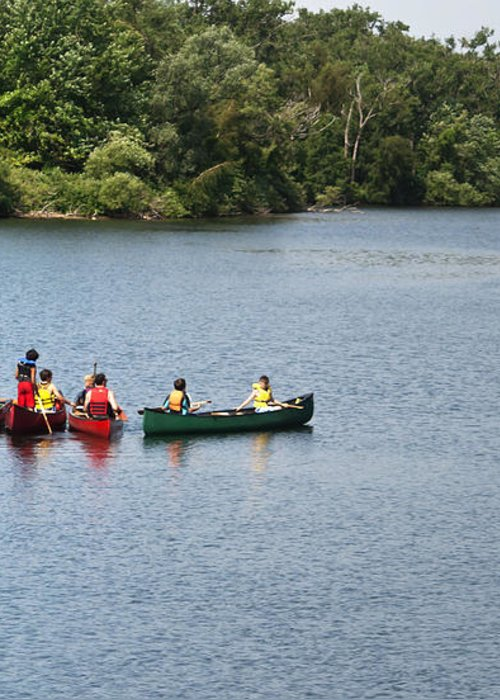 Canoe Greeting Card featuring the photograph Canoes On Lake by Blink Images