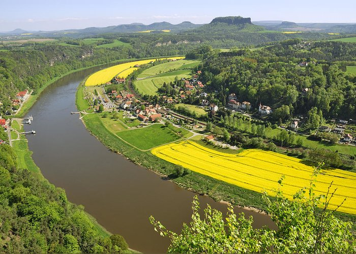 Germany Greeting Card featuring the photograph Canola Fields by Frank Remar