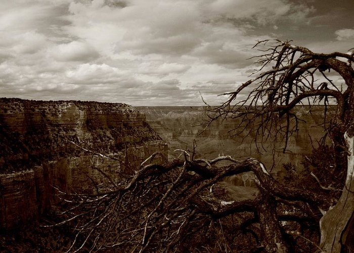 Grand Canyon Greeting Card featuring the photograph Canyon Black And White by Christopher Kirby