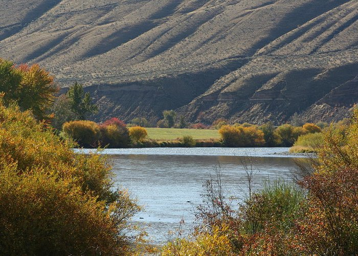 River Greeting Card featuring the photograph Canyon River by JoJo Photography